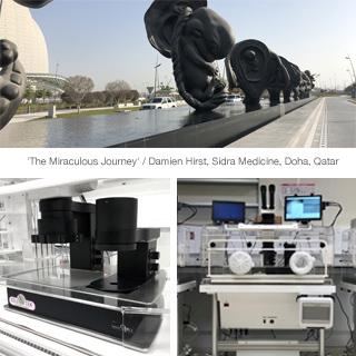 Newsletter-DualStation_Doha